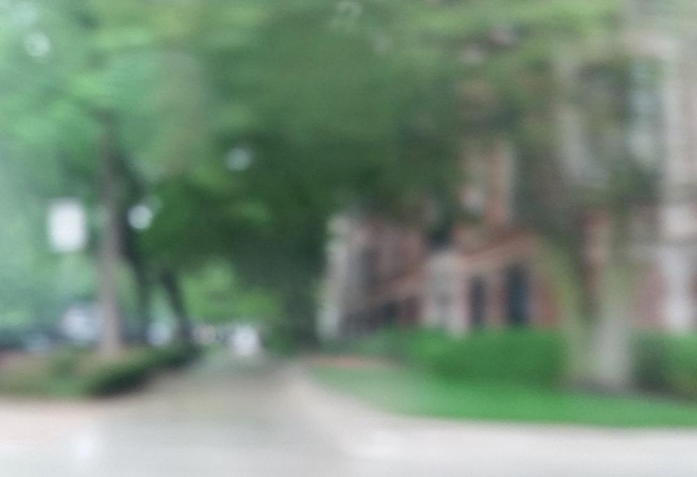 walk_through_the_neighborhood.jpg