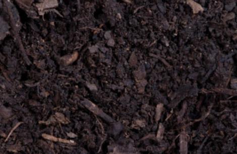 Compost - $40/yard