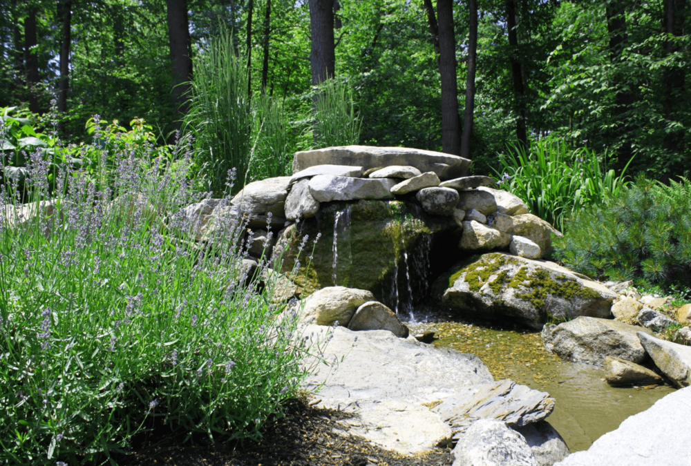 Milford, NH top landscaper with stunning landscape design ideas
