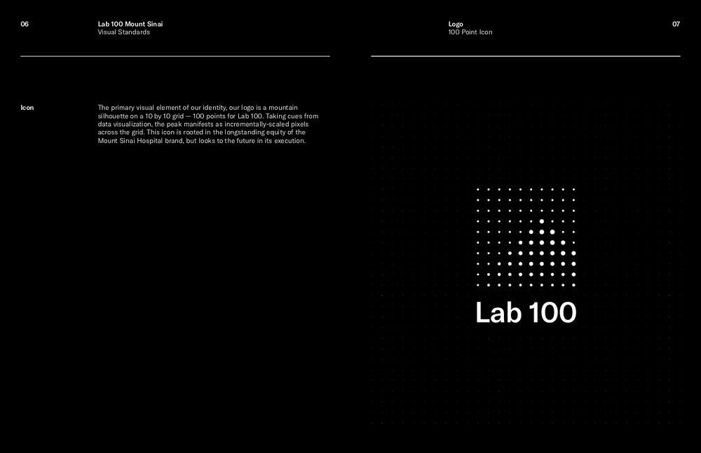 Lab 100 Visual Standards Current.jpg
