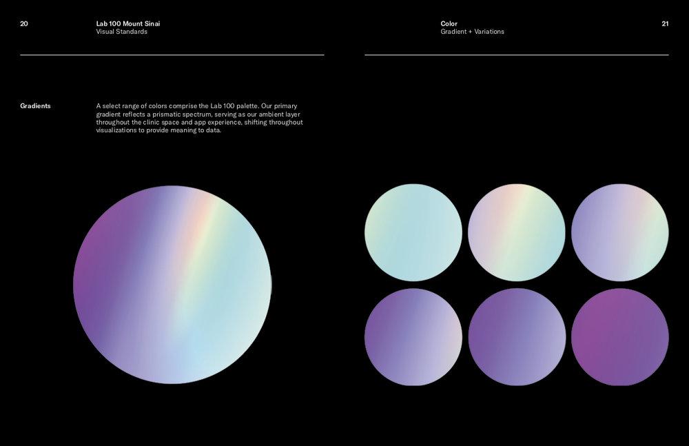 Lab 100 Visual Standards Current5.jpg