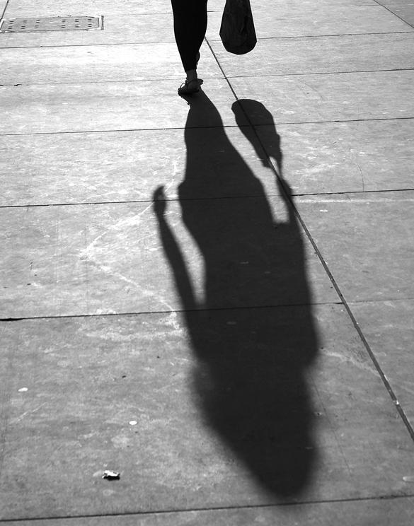 Shadow D800