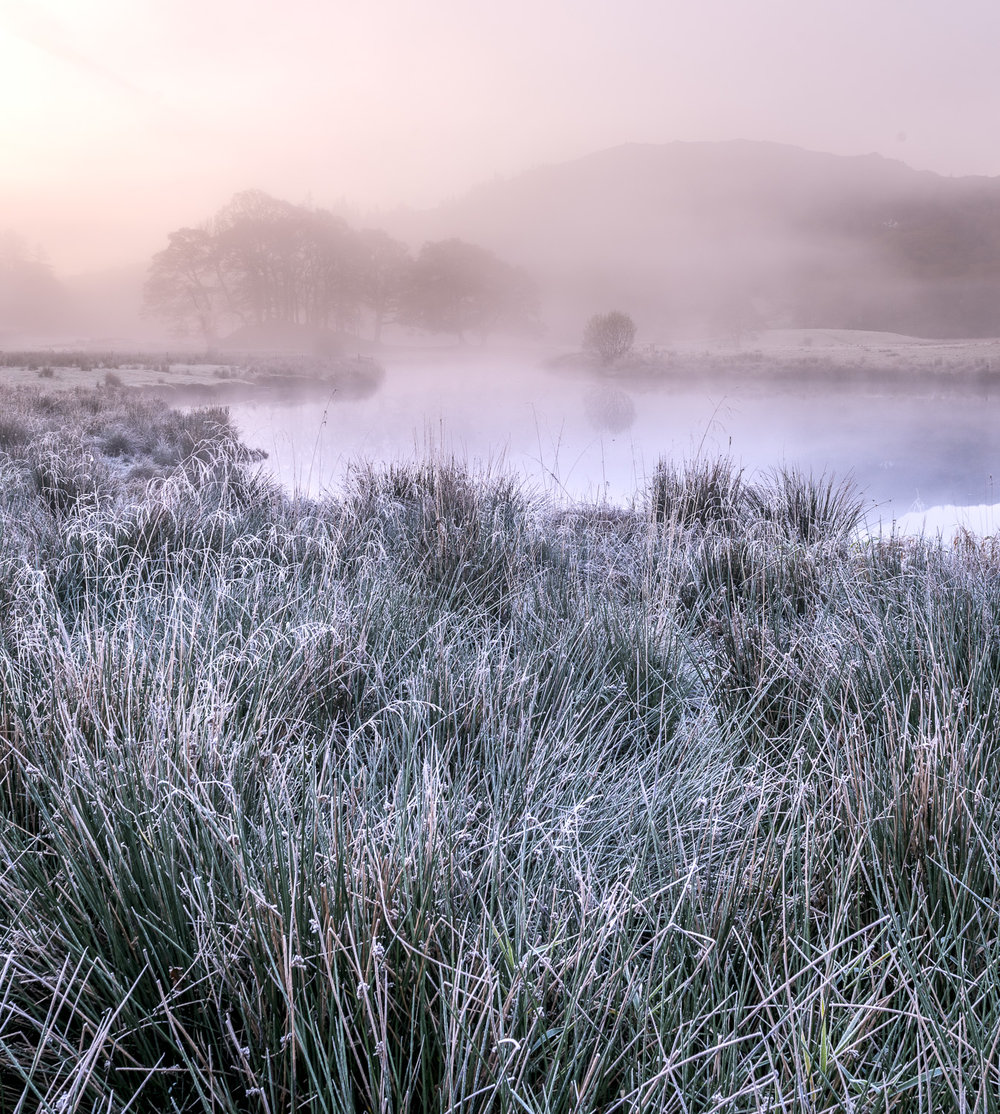 Morning Pastel Frost