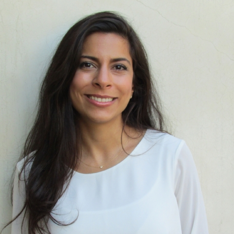 Lili Farhandi - Systems AnalystEmail | LinkedIn