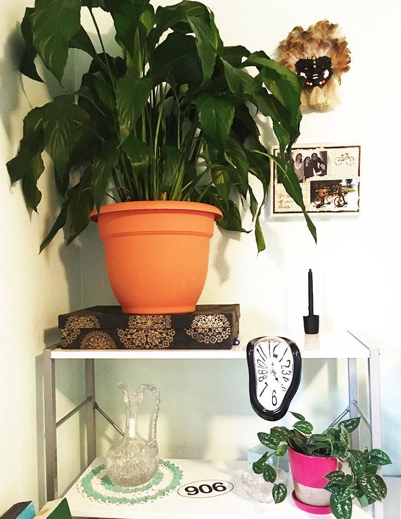 lilypothos
