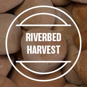 riverbed-harvest.jpg