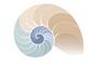 logo spiral.jpg