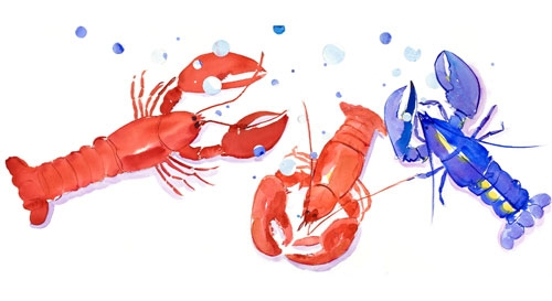 lucky-blue-lobsters-lg.jpg