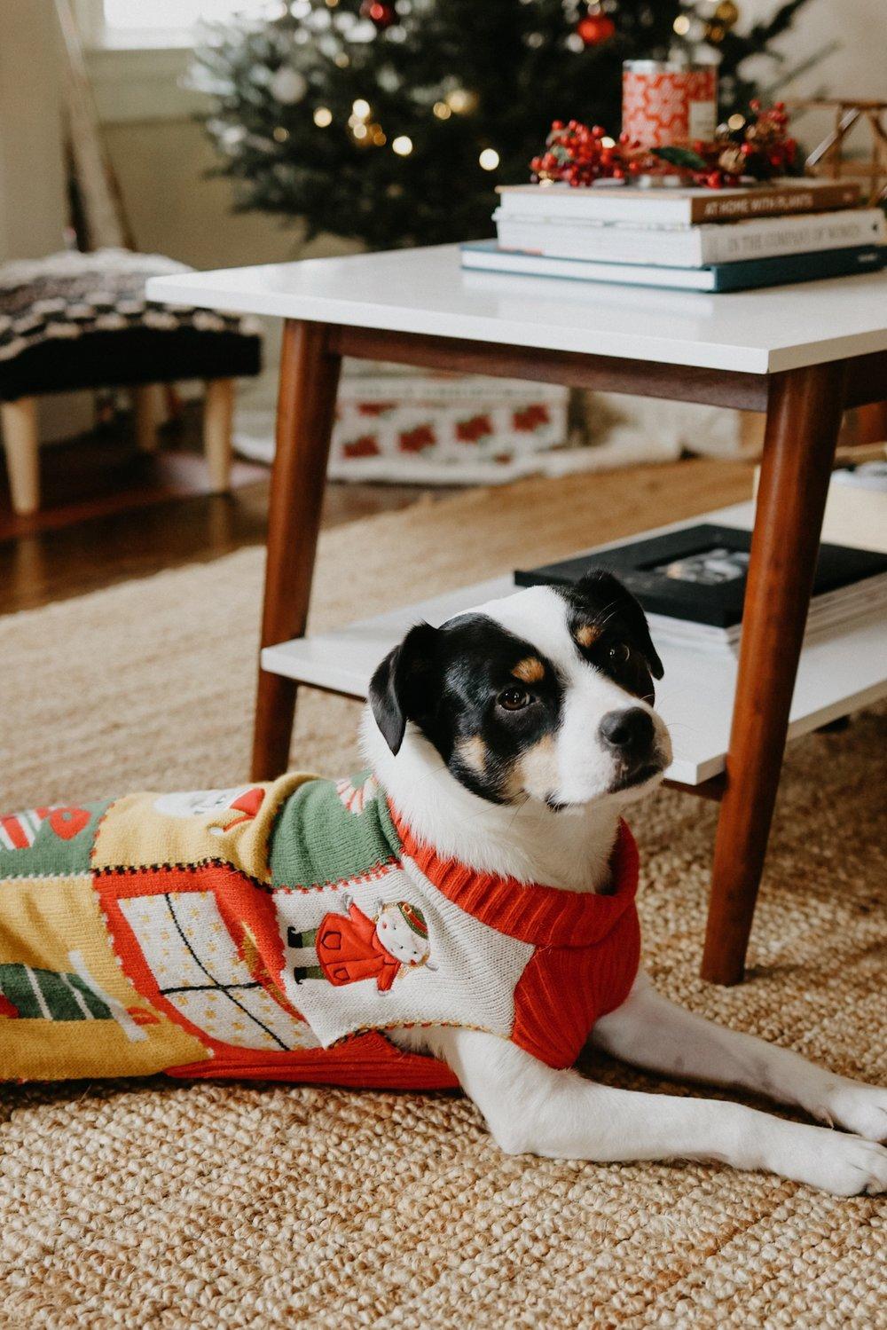 Holiday Home Decor - Sarah Heyl