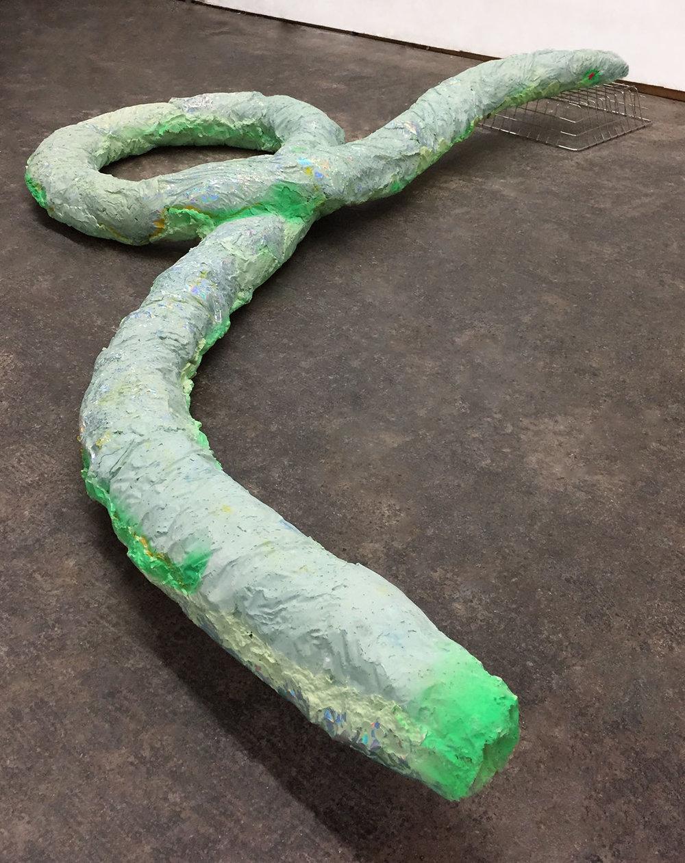 snakesidefeb12lrg.jpg