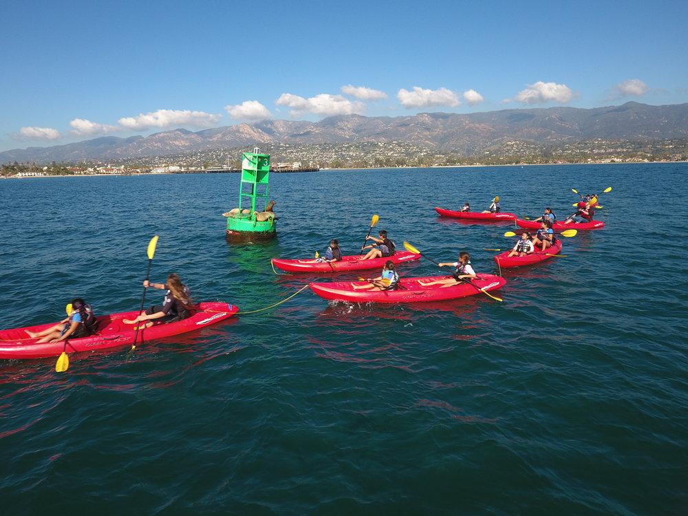 kayakers in the santa barbara harbor