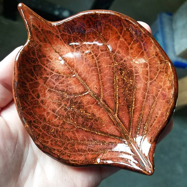 Unloading a glaze kiln is one of my favorite things. I just pulled some more fall leaf dishes out this morning. The red is especially vibrant this time and shows all of the veins of the leaf 🍁 . . . . #instapottery #leaf #leaves #fallleaves #kilnunloading #ceramic #smalldish #leafplate #pottersofinstagram #ceramicart #falldecor #miffyyost #foxglovestudio #foxglovestudiopottery