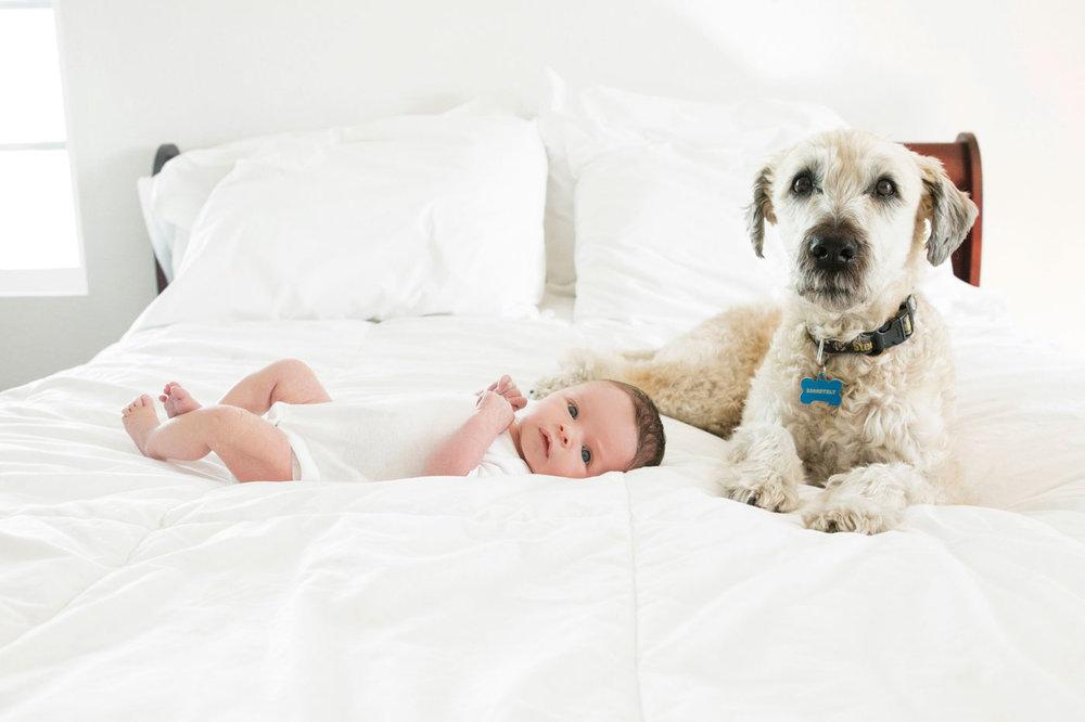 newborn_0041.jpg