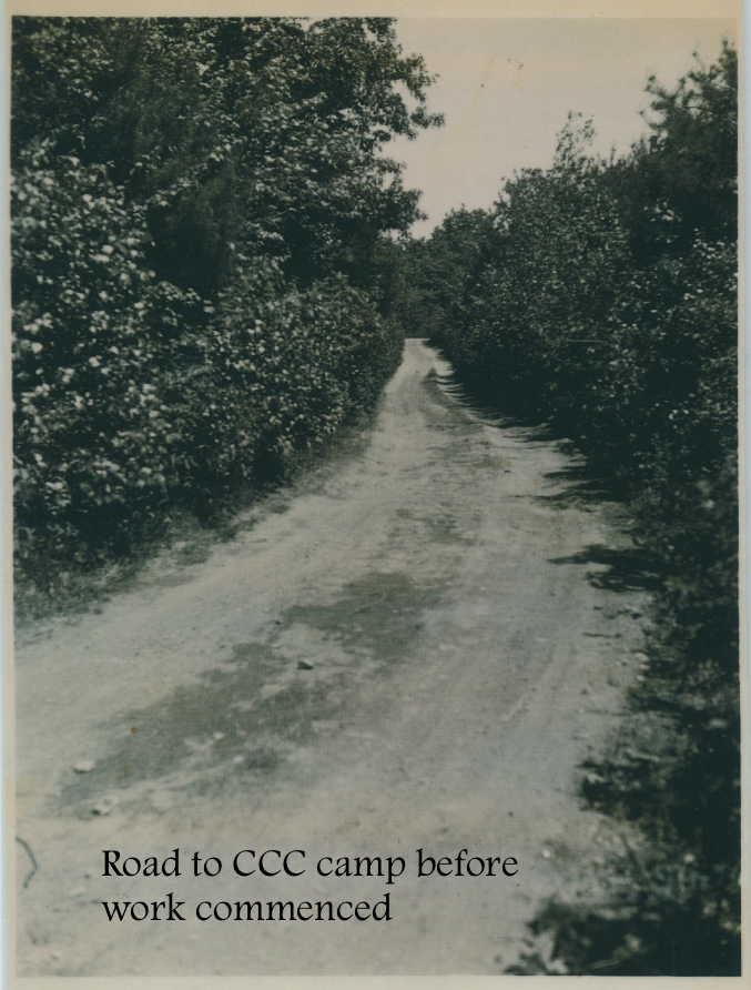 #6 Road to CCC camp before work commenced.png
