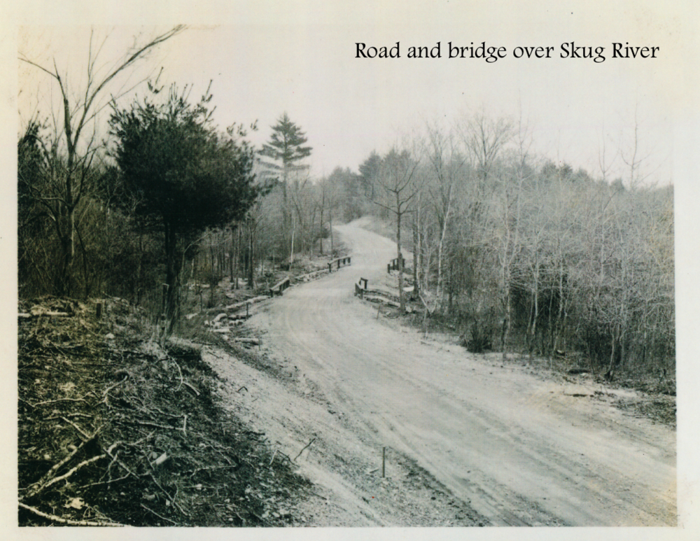 #11Road and bridge over Skug River.png