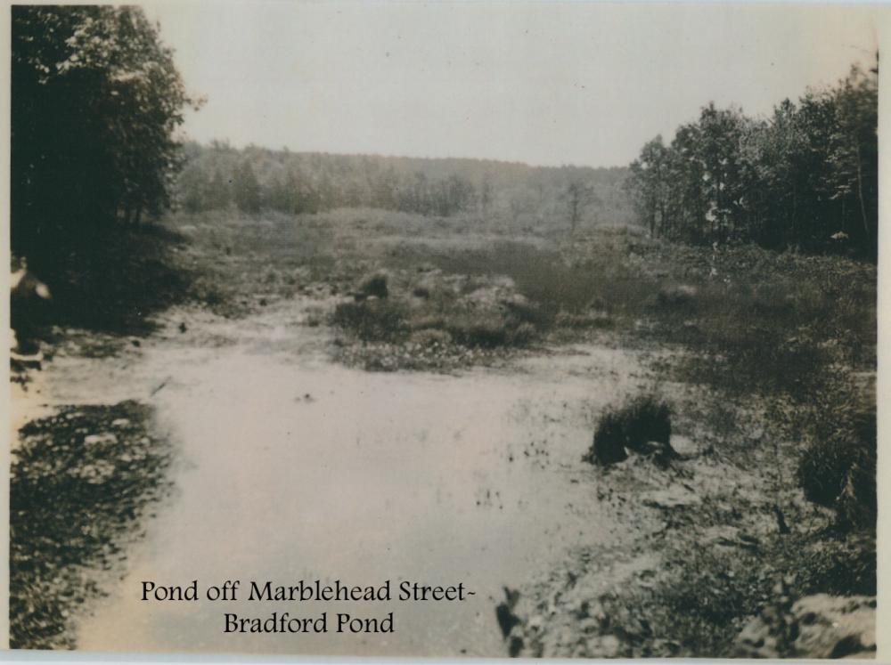 #15 Pond off Marblehead Street-Bradford Pond.png
