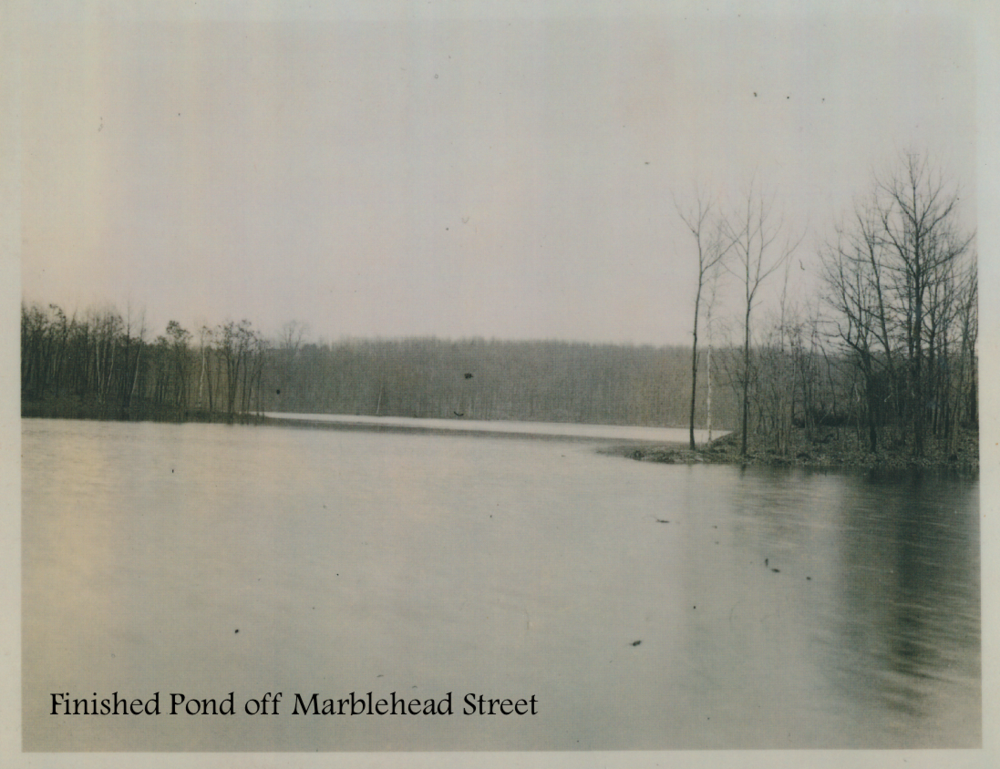 #17 Finished Pond off Marblehead Street.png