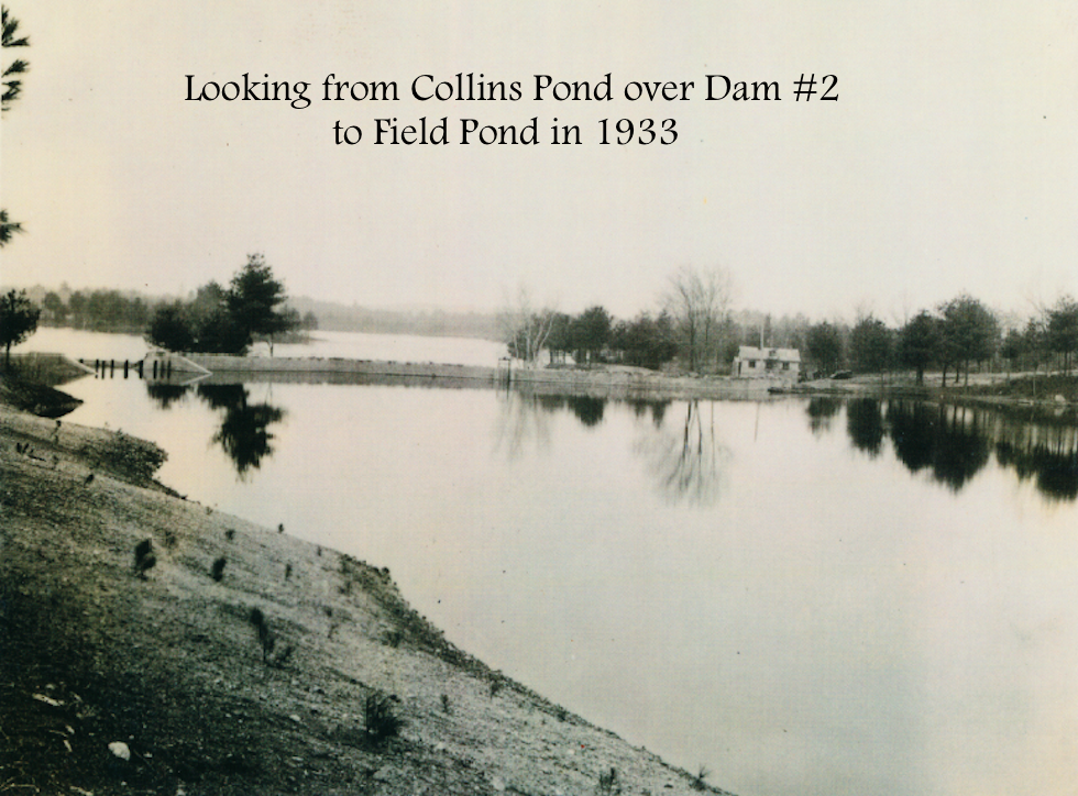 #18 Ponds#1Field&2Collins.png