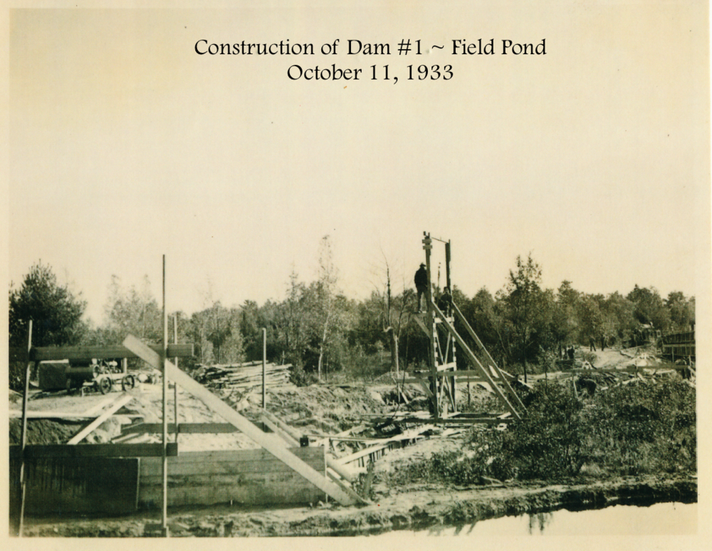 #24 Construction Dam #1 Field Pond.png