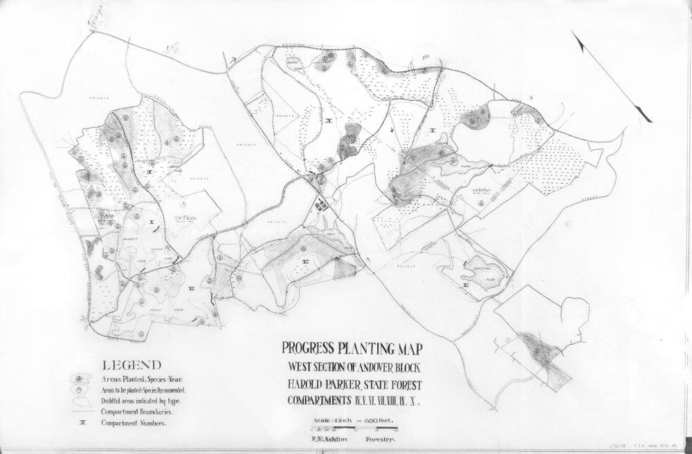 Progress Planting Map 1938