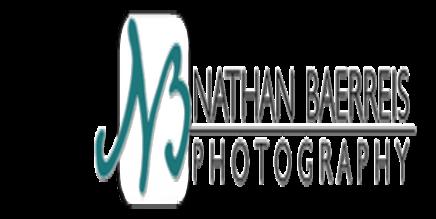 Baerreis logo.png