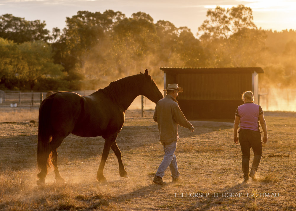 We Care - A PHOTOGRAPHIC EXHIBITION PROJECT TO SUPPORT AUSTRALIAN FARMERS