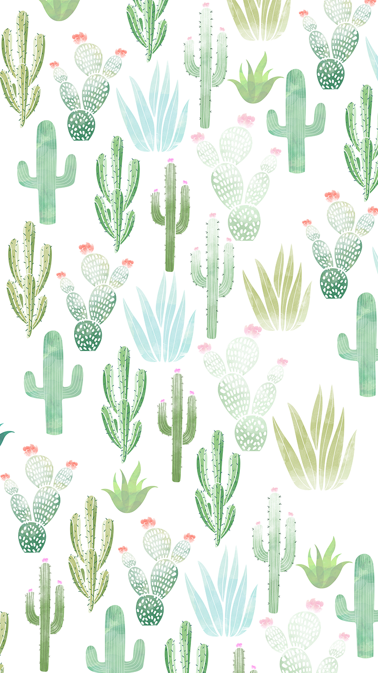 All-cactus.png