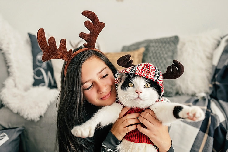 be unique and creative with your christmas cards this holiday season