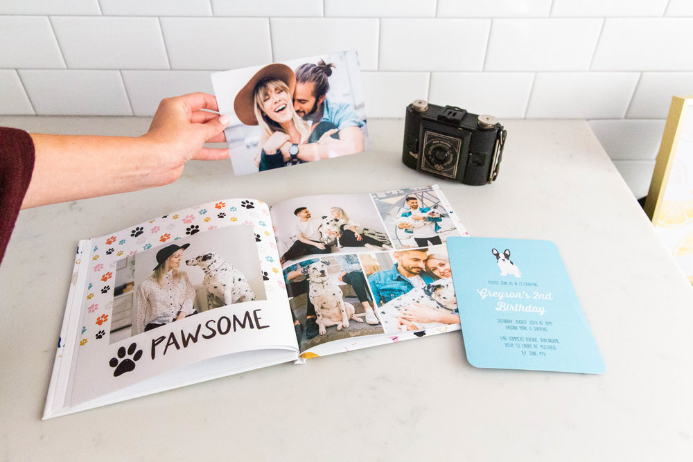 french-bulldog-invitation-card.jpg