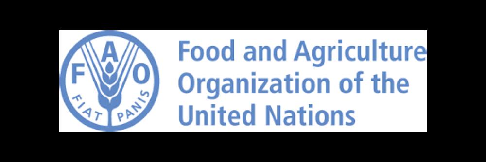 FAO logo-01.png
