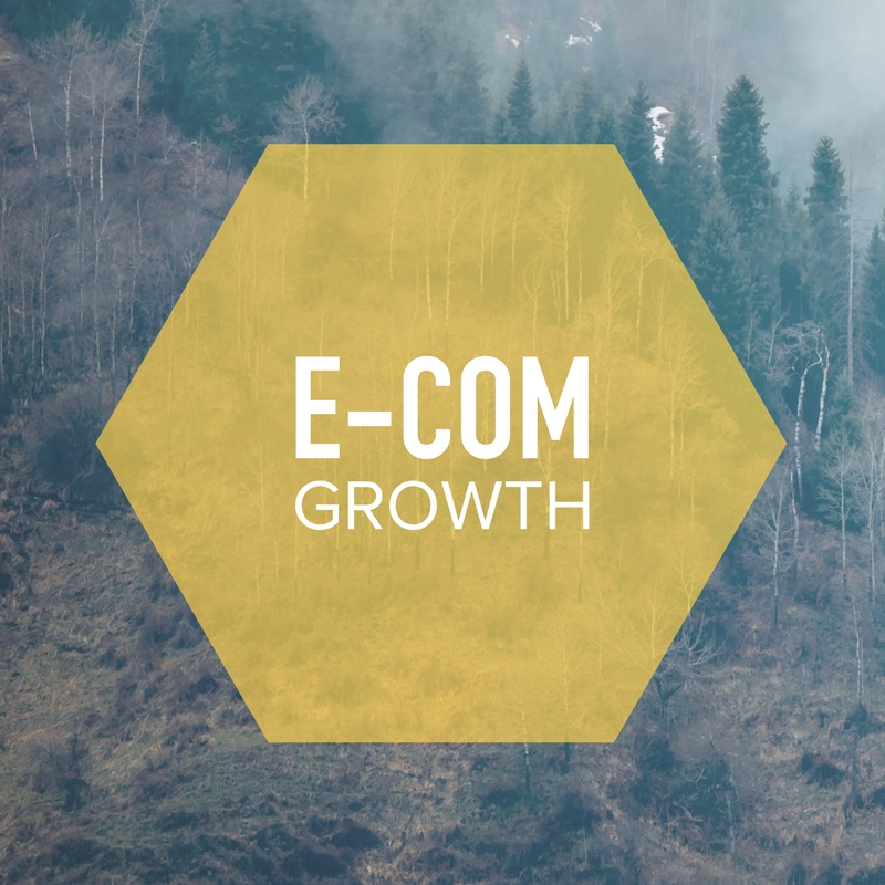 24% growth in declining market i9media was able to grow this brands e-com sales to new heights with an 8% increase in the first 8 months and a 24% increase the second year and broke all e-com sales records for the company.