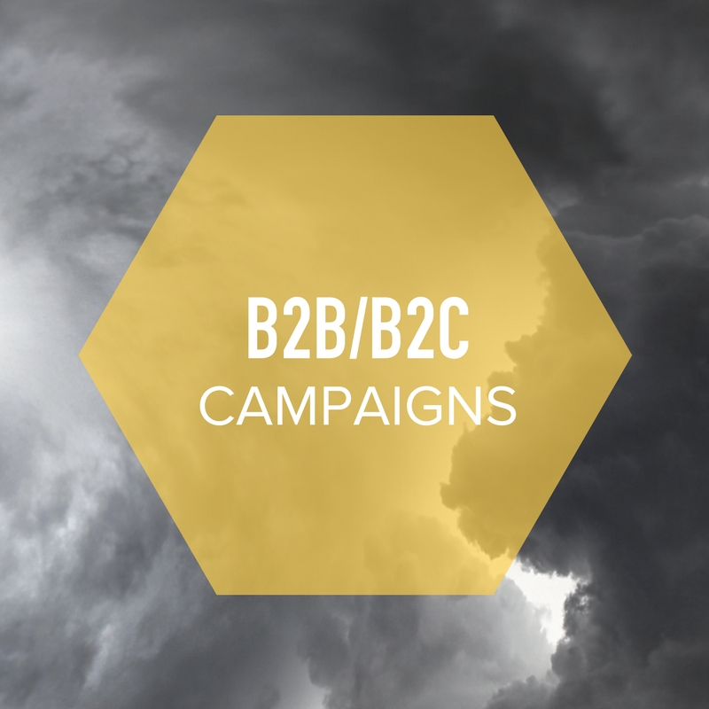 TOPic 1 i9media creates separate B2C and B2B packages to effectively build, rolling out and communicate direct to consumers and empowering retailers with media and information.