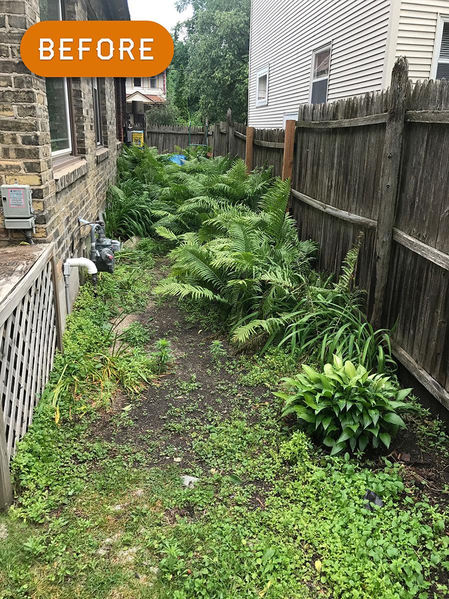 garden-2-before.jpg