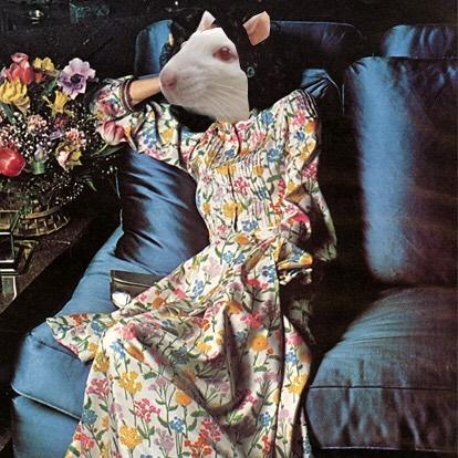 Vermin Vogue. What's your #ratformal look for #RatBall2018? . . . #ravishingrodent #vermin #jerseycity #ootd #instafashion #vintage #jerseycityart #fashionblogger #fashionista #streetstyle #stylish #womensfashion #jcmakeityours #ratball #runwayfashion #ratcouture #nycart #fashionaddict #nycfashionblogger