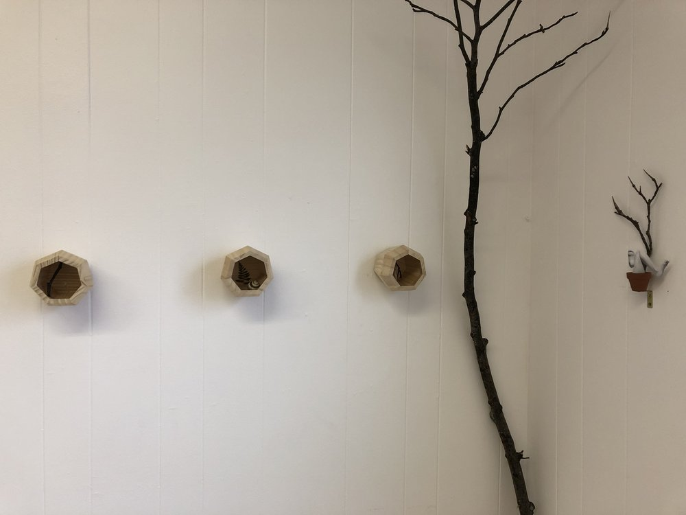 Mojdeh Rezaeipour (L):  First, we must unfurl , 2018, tree branch, baby fern & seashell on wood (R):  Let go; Deep Rest; Big Dreams , 2018, paper & tree branch in miniature pot & soil