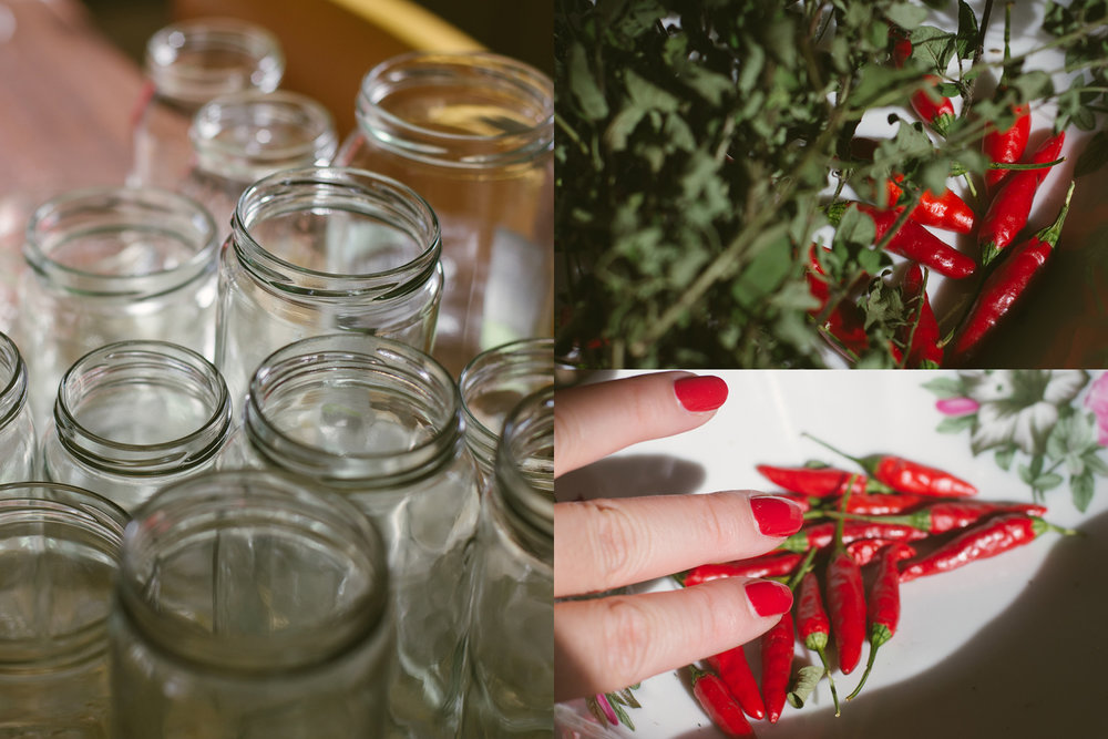 Sanitised jars and our seasoning – oregano and chilli. My nails were painted an appropriate colour.