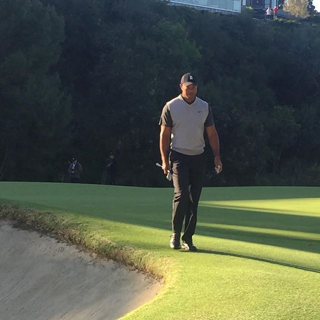 Tiger on 12 during 1st round of #genesisopen #pga #pgatour #tiger