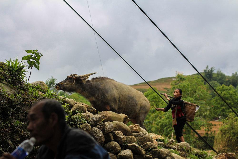 Sapa Village (239).jpg