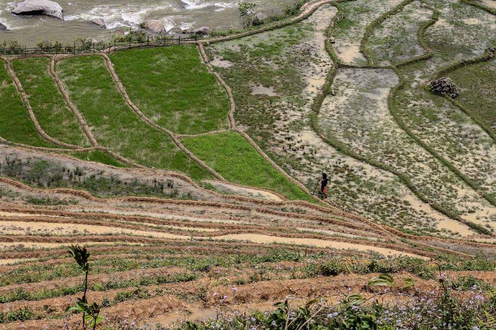 Sapa Village (470).jpg