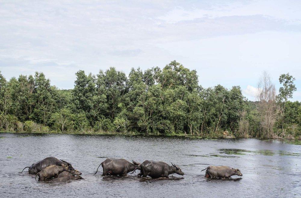 Sihanoukville (479).jpg