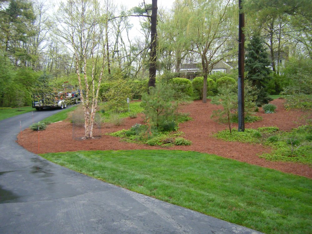 Spring & Fall Cleanup - Let us get your yard ready for spring or winter!