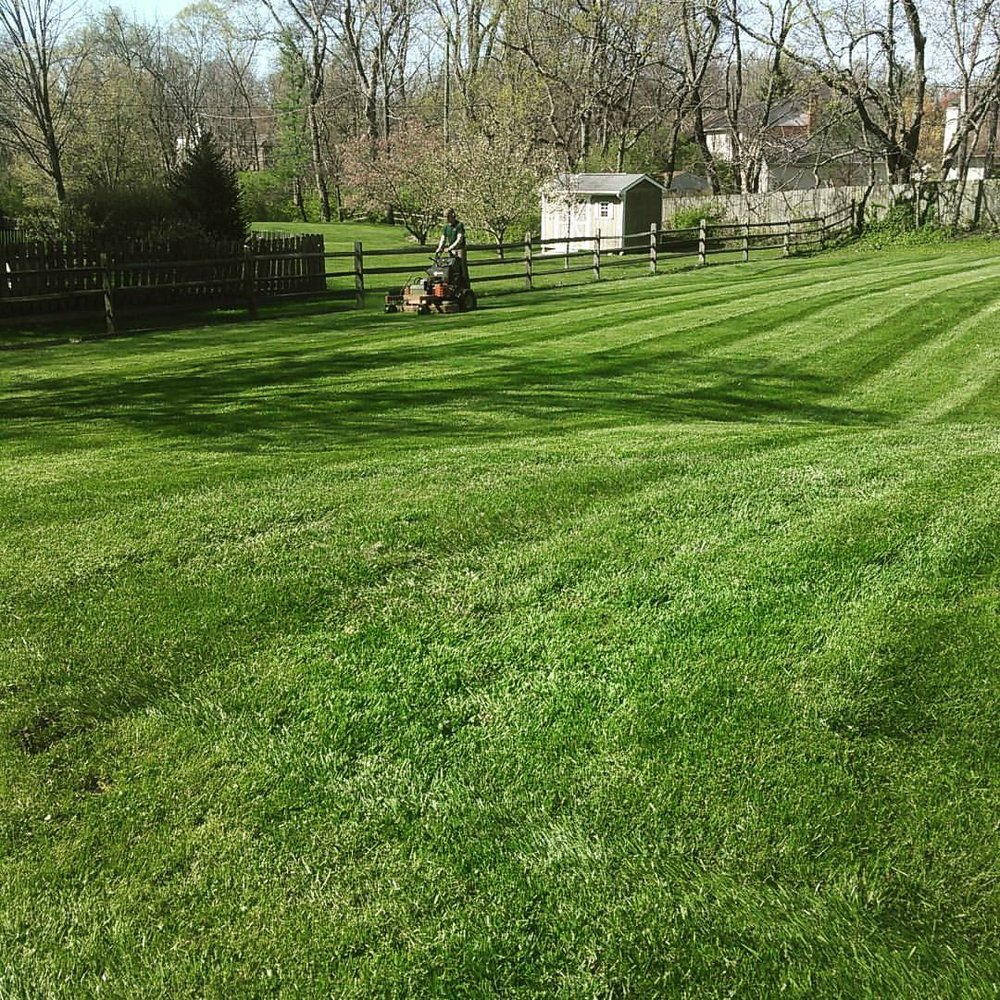 Lawn Maintenance - We make every lawn look green and healthy!