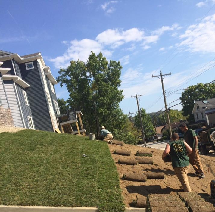 Turf Installation - Whether a lawn renovation or spot seeding let us take care of your lawn!