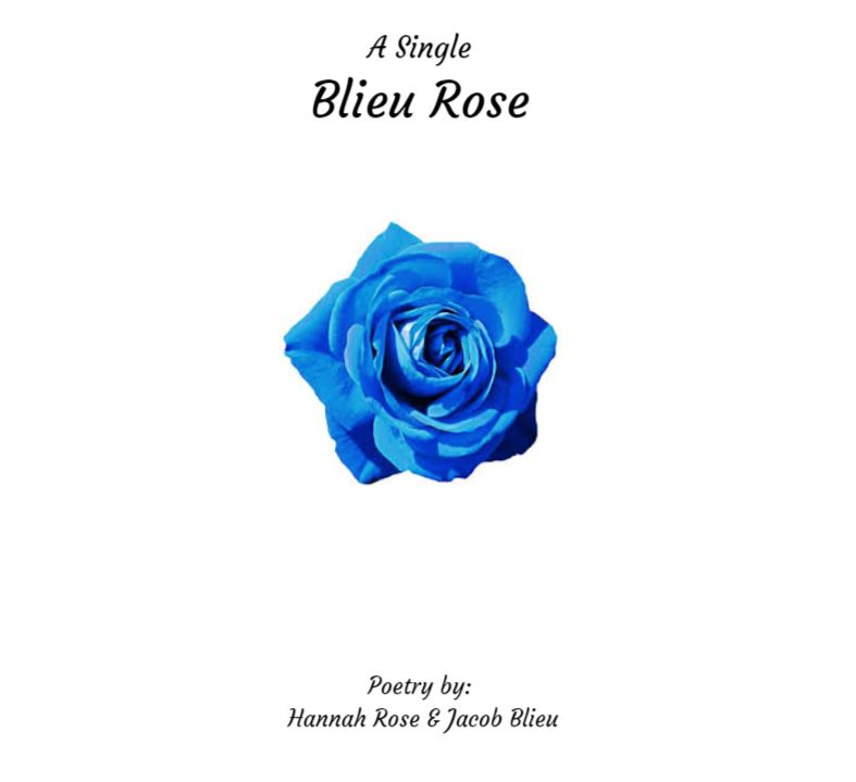 """Click on the picture above to view an excerpt from,  """"A Single Blieu Rose."""""""