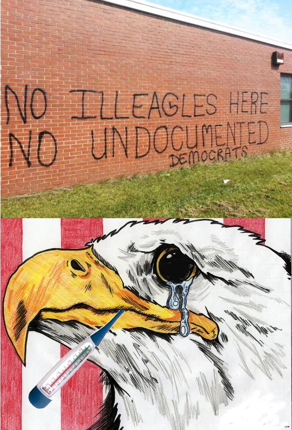 Ill Eagles