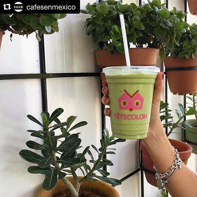 ¡Muchas gracias por visitarnos! Los esperamos siempre 😃🦉💗☕️✨✨ // #Repost @cafesenmexico (@get_repost) ・・・ El mejor matcha frappe #cafe #monterrey  #mexico  #cafelocal