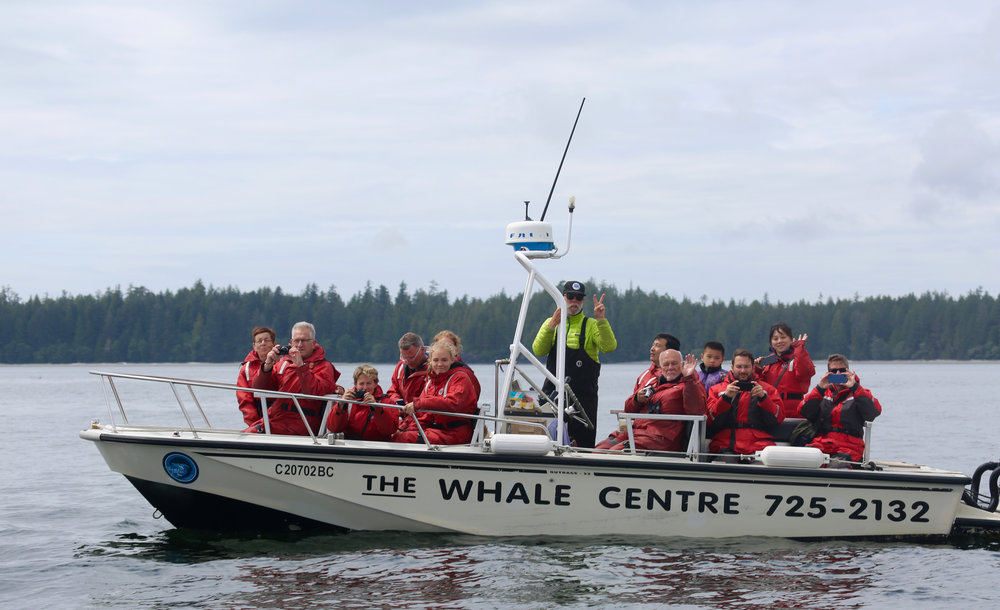 Whale Watching Tour Tofino, The whale centre
