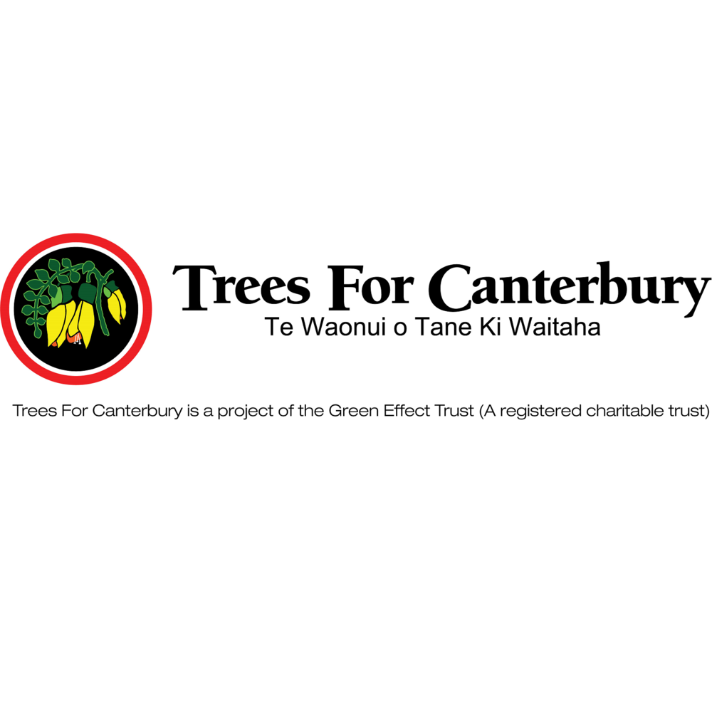 Trees For Canterbury Square.png