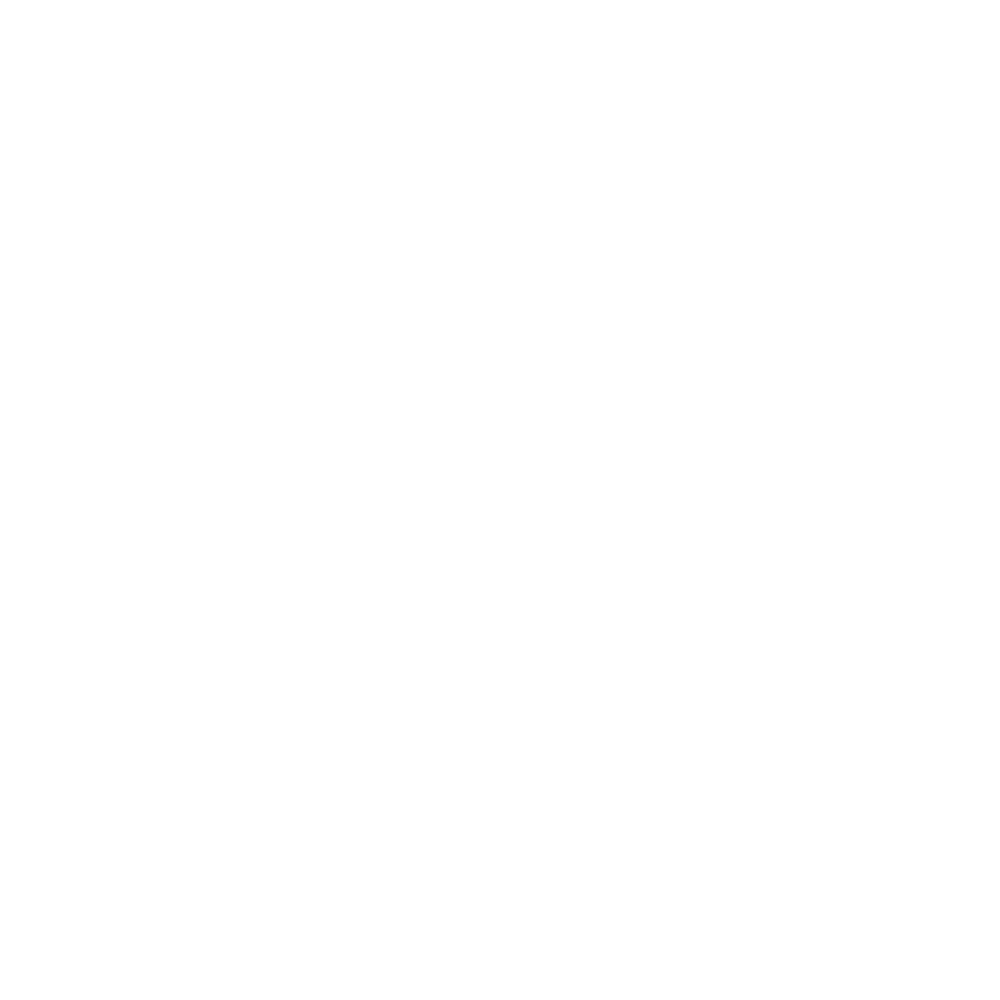 Pin our location icon