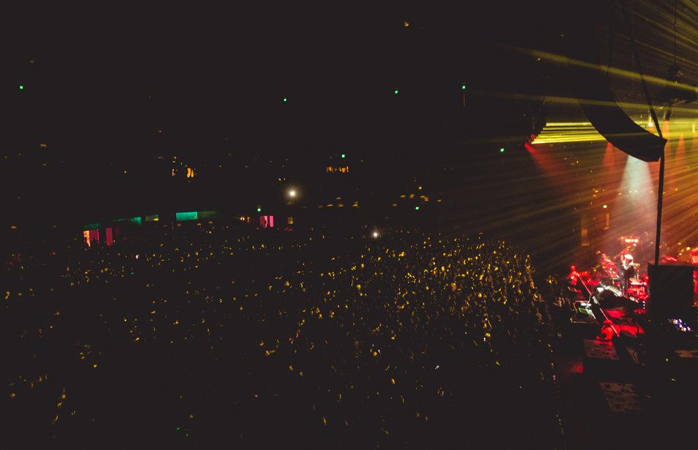 Jason Hendardy LCD Soundsytem 3.jpg
